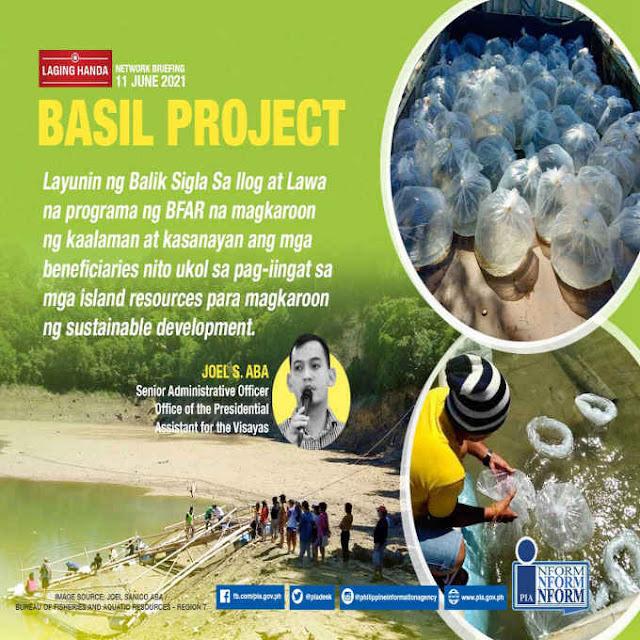 basil project
