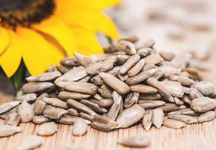 Sunflower seeds opener