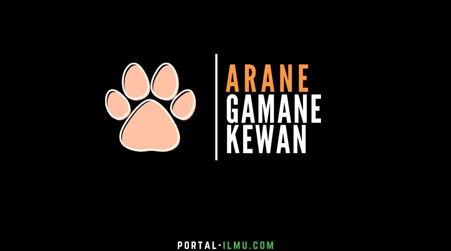 Arane Gamane Kewan dalam Bahasa Jawa: Senjata Hewan