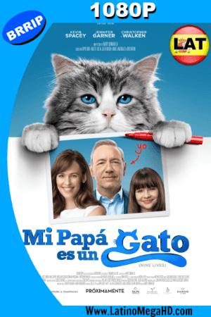 Mi Papá es un Gato (2016) Latino Full HD 1080P ()