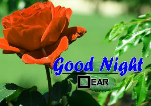 Beautiful Good Night 4k Images For Whatsapp Download 4