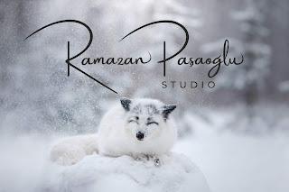 Photography Fotoğrafçı logo tasarımı imza siyah beyaz