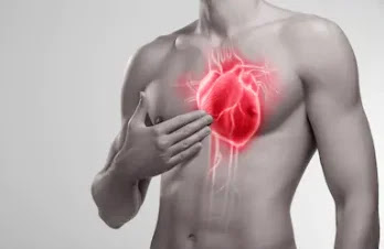 Top 32 Wonderful facts about Human Heart.