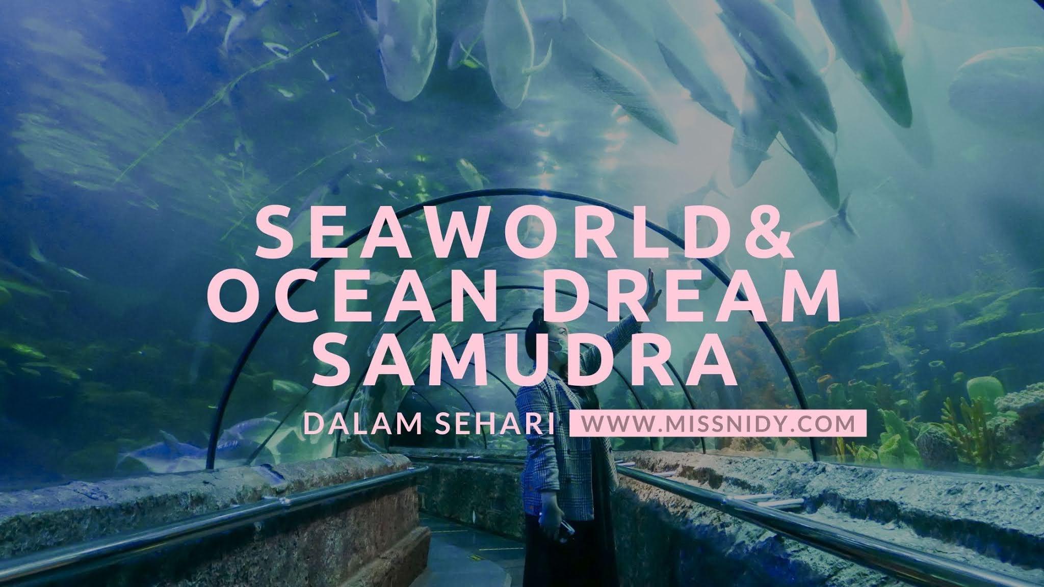main ke seaworld dan ocean dream samudra pas pandemi