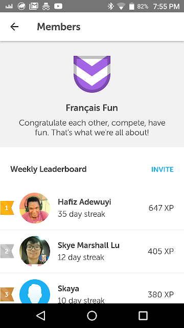 If not bragging rights, then what do we live for? Showing off my stellar Duolingo French stats