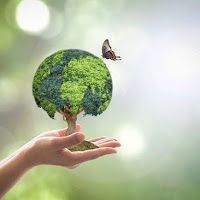 O eco-genocídio pode colapsar a humanidade ?