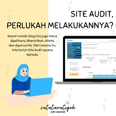 site-audit-blog-website