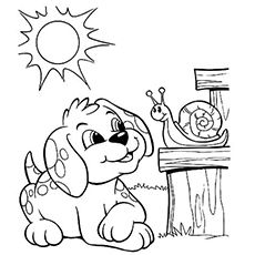 Dogs coloring pages 9