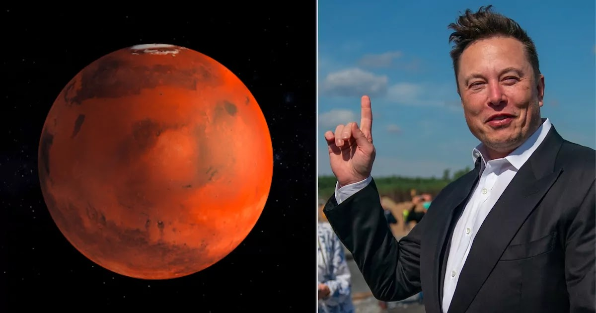 German Scientist Had Predicted That A Person Named 'Elon' Would Take Humans To Mars