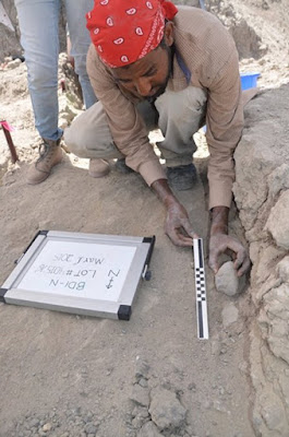 Blade Engda dell'Università di Poitiers solleva un manufatto da un sedimento di 2,6 milioni di anni che espone un'impronta dell'artefatto sull'antica superficie sottostante.