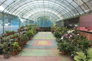 Lokasi Tempat Wisata Bukit Flora