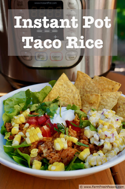 This comfort food combines taco-seasoned meat with cooked rice and salsa in a hearty bowl of family-friendly food. This recipe is great to serve a crowd, too. Use the Instant Pot for easy clean up!