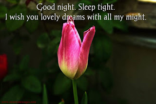 good night sleep tight love images