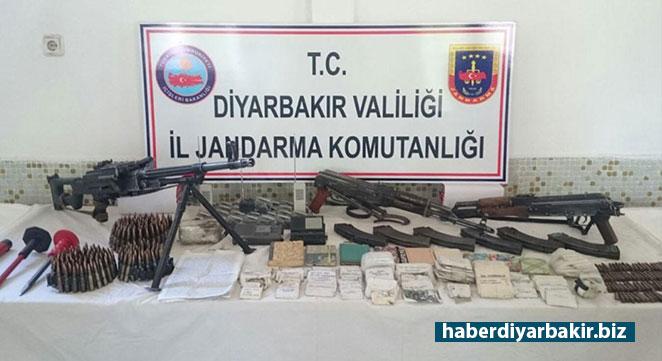 Diyarbakır'da 60 bin 640 kök kenevir ele geçirildi