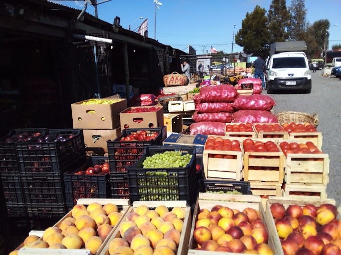Levemente comienzan a bajar precios de frutas en Osorno