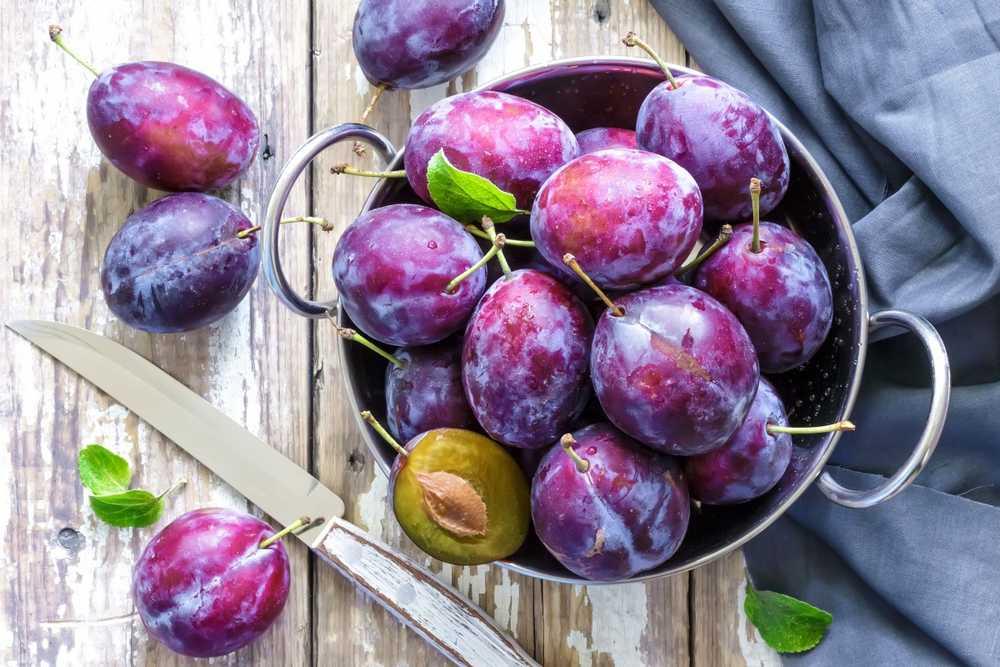 Resep Diet Buah Plum (realfoodforlife.com)