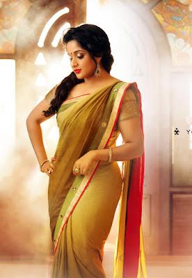 Malayalam actress Kavya in saree images