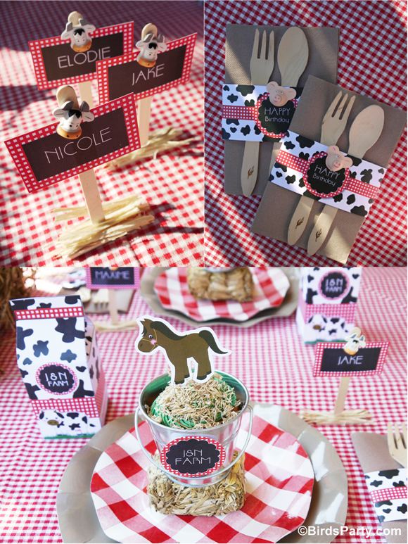 Farm and Barnyard Birthday Party Kids Table and Printables - BirdsParty.com
