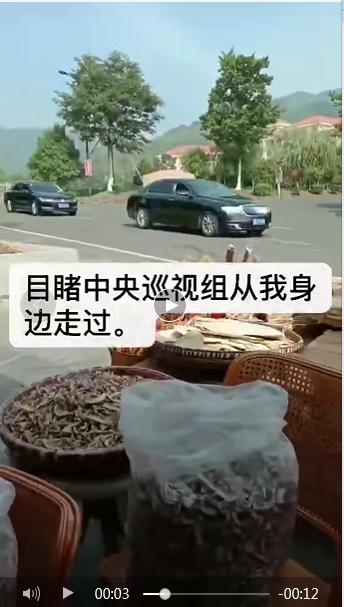民众质疑形式主义,江苏宜兴农民向中央扫黑除恶第十七督导组举报基层组织涉黑无回应