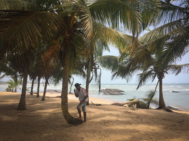 Ko-Sa Beach Resort, Ghana (facandu-si cruce inainte de a urca dupa nuci de cocos)