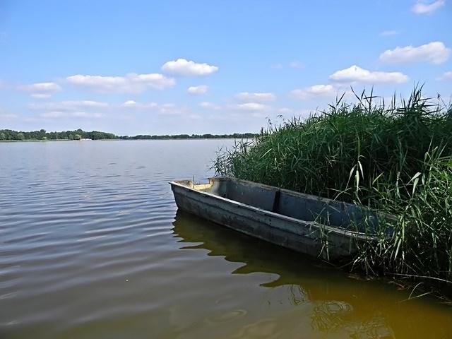 woda, łódka, trzciny, niebo, jeziora