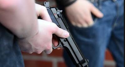 Зеленский не поддержал петицию о легализации короткоствольного оружия