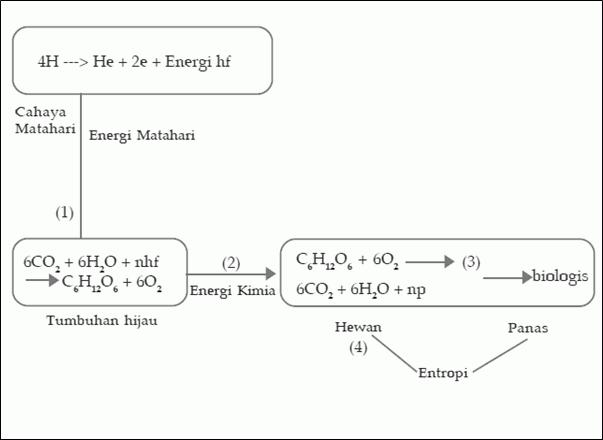 Perlu diketahui bahwa proses penyediaan energi Metabolisme