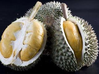 Jenis Durian Dan Cara Berkebun Durian