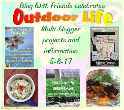 Blog With Friends, multi-blogger projects based on a theme. May 2017 theme is Outdoor Life | Featured on www.BakingInATornado.com | #recipe #diy