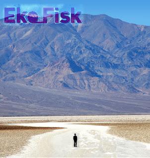 Eko_Fisk Somewhere