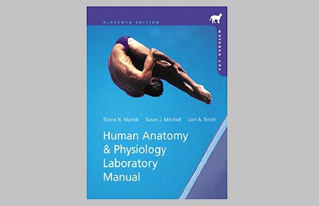 Human Anatomy & Physiology Cat Version 11th Edition PDF
