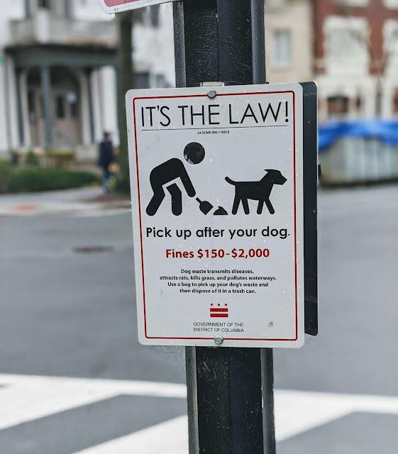 Washington DC fine for littering