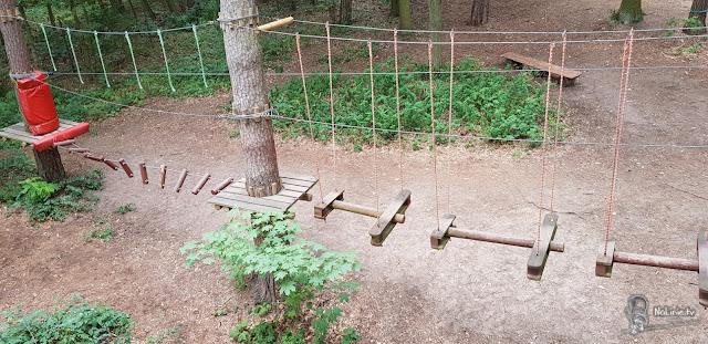 przeszkody w parku linowym