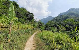 Indonesia, Isla de Java, Candi Selogriyo.