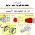 تحميل كتاب الدوائر الكهربائية الأساسية بالمركبات  Book Basic electrical circuits in cars
