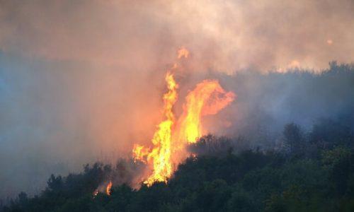Στο ελληνικό έδαφος εισήλθε το μεσημέρι της Κυριακής μεγάλη φωτιά που τις τελευταίες ημέρες έκαιγε δασικές εκτάσεις στην Αλβανία.