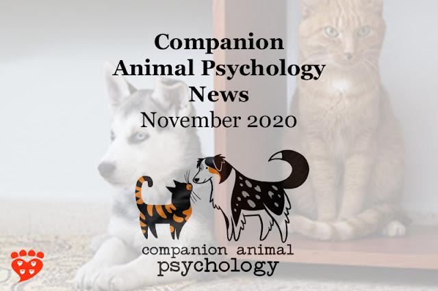 Companion Animal Psychology News November 2020