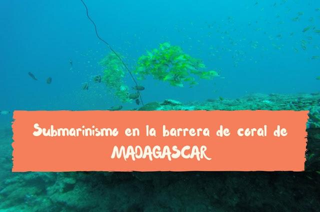 submarinismo madagascar barrera de coral