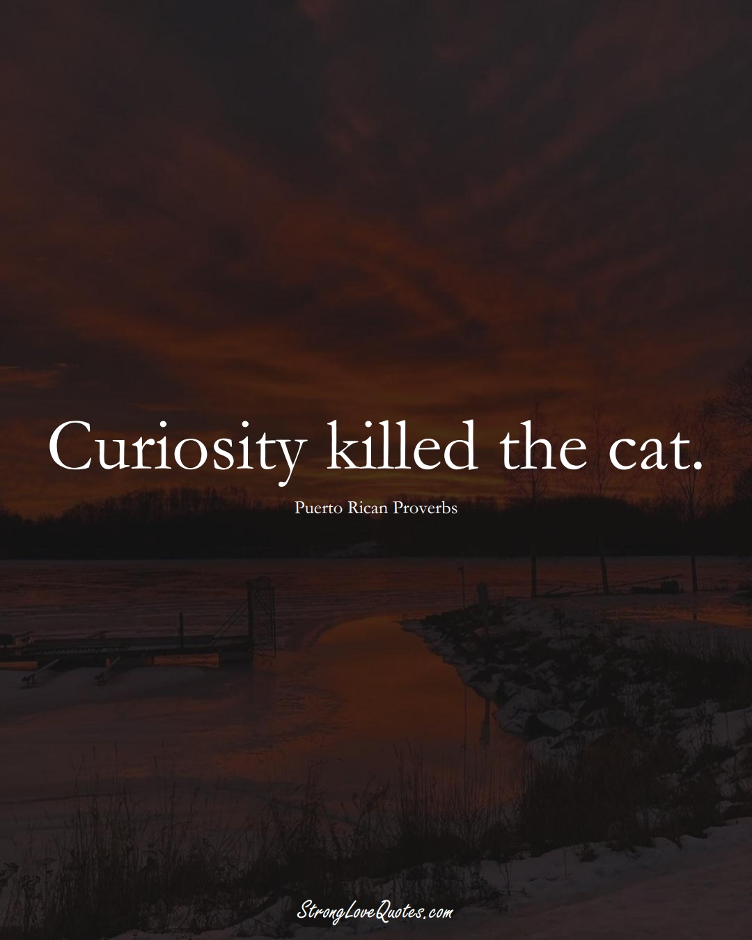Curiosity killed the cat. (Puerto Rican Sayings);  #CaribbeanSayings
