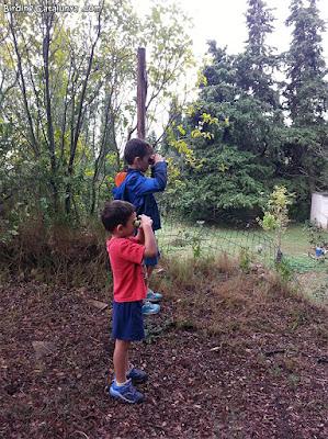 Els més petits també intentaven trobar els ocells