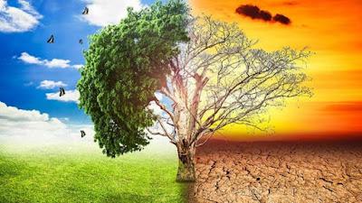 Deterioro medioambiental