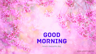 good morning wishes with beautiful flowers background
