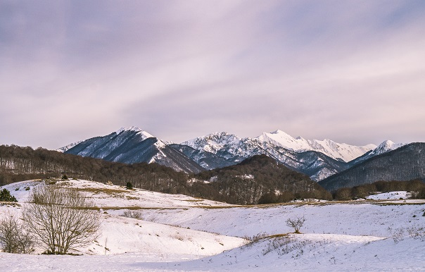 capturar-un-paisaje-nevado