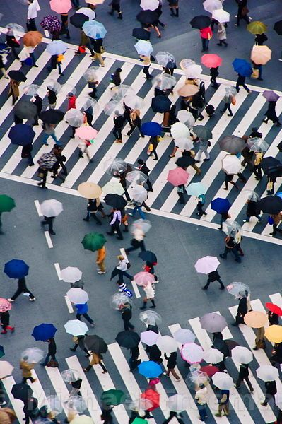 The World's Growing Population - Adjacent to Hachikō Plaza is arguably one of the coolest intersections you will ever see in your life. The sheer energy of the place is enough to stop you dead in your tracks while you loudly proclaim to yourself, 'Wow – I'm in Tokyo!'