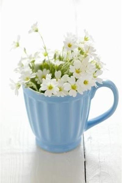 Gabungan antara mug dan bunga potong menjadi hiasan meja yang cantik.