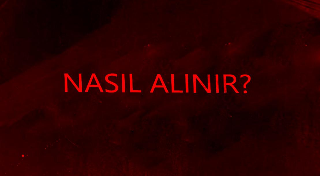 W2GF VIP NASIL ALABILIRIM?