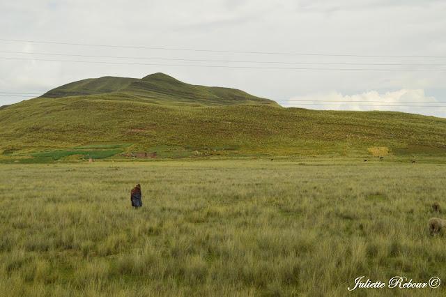 Road-trip au Pérou