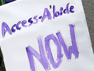 "The white placard has words painted in purple paint. One cansee the brush strokes. ""Access-A'laide"" is in mixed case across the top and NOW is in large capitals in the middle."