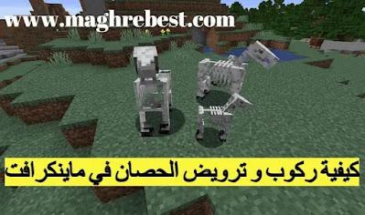 كيفية ركوب حصان الهيكل العظمي في ماينكرافت Minecraft؟