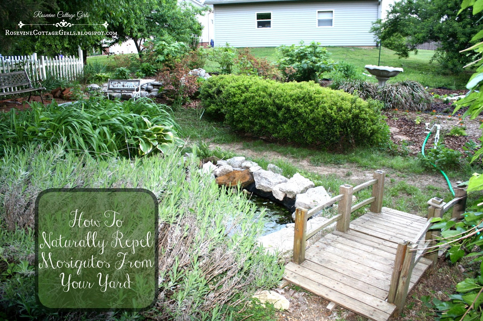 Rosevine Cottage Girls How To Naturally Repel Mosquitos